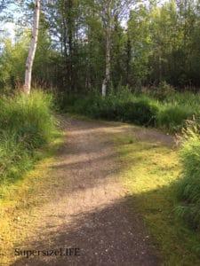 Path in Baxter Bog.